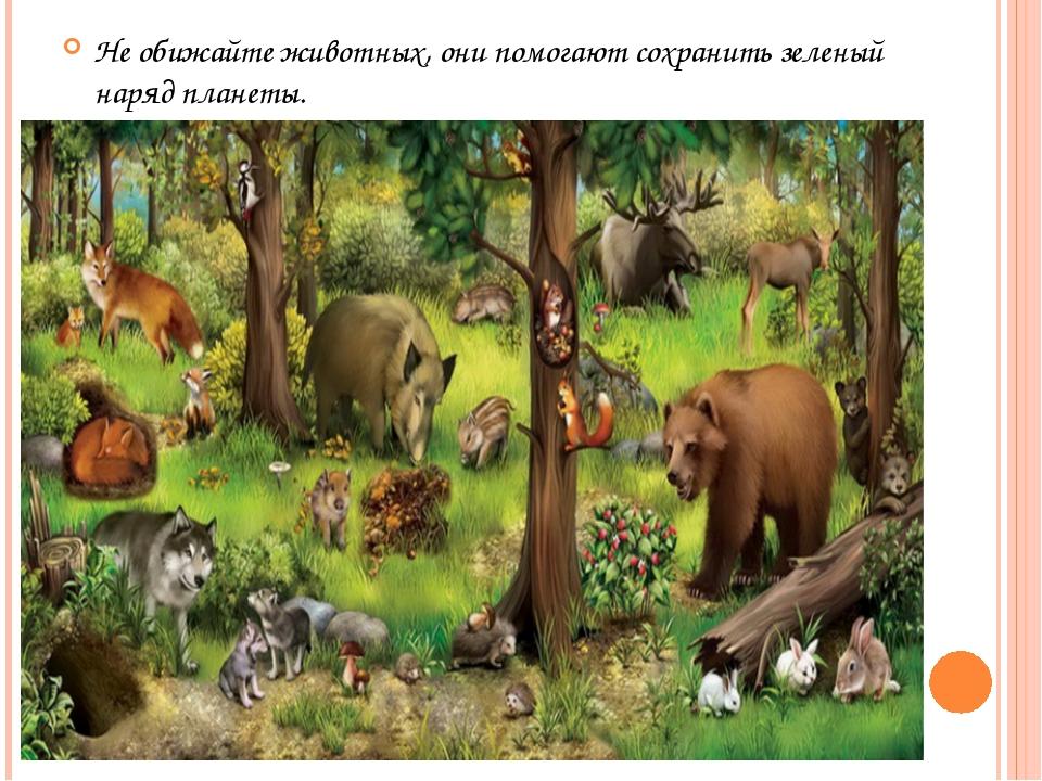 Не обижайте животных, они помогают сохранить зеленый наряд планеты.