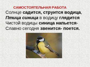 САМОСТОЯТЕЛЬНАЯ РАБОТА Солнце садится, струится водица, Птица синица в водиц