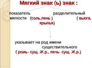 Мягкий знак (ь) знак : показатель разделительный мягкости (соль,пень ) ( вью