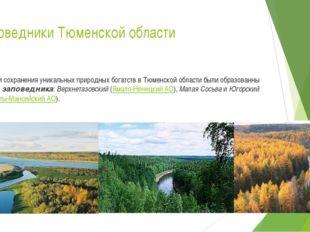 Заповедники Тюменской области Ради сохранения уникальных природных богатств в