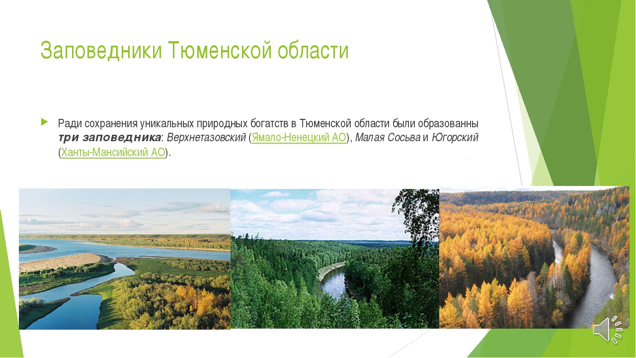 Заповедники Тюменской области Ради сохранения уникальных природных богатств в...
