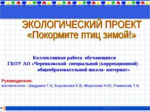 Коллективная работа обучающихся ГБОУ АО «Черевковской специальной (коррекцион