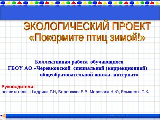 Коллективная работа обучающихся ГБОУ АО «Черевковской специальной (коррекцион...