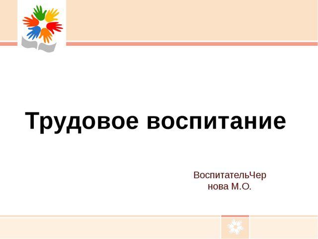 Презентация по трудовому воспитанию в детском саду Трудовое  ВоспитательЧернова М О Трудовое воспитание