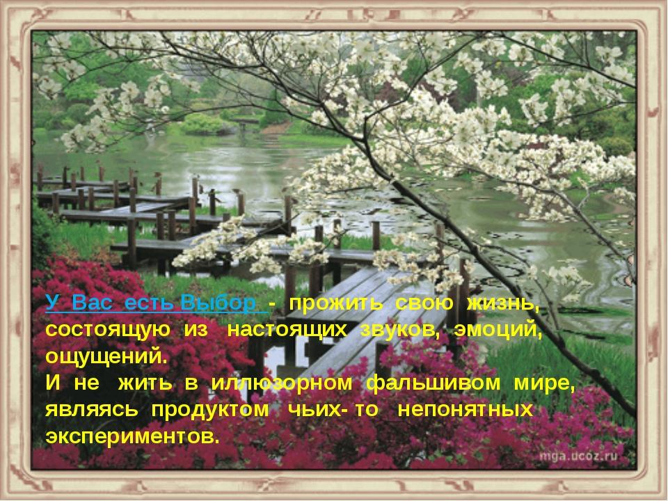 У Вас есть Выбор - прожить свою жизнь, состоящую из настоящих звуков, эмоций,...