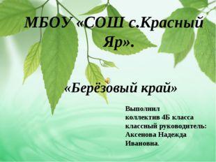 МБОУ «СОШ с.Красный Яр». «Берёзовый край» Выполнил коллектив 4Б класса классн