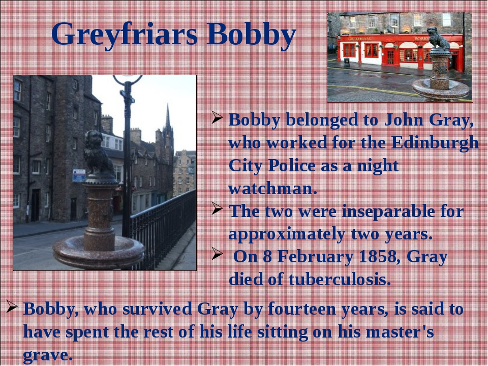 Greyfriars Bobby Bobby belonged to John Gray, who worked for the Edinburgh Ci...