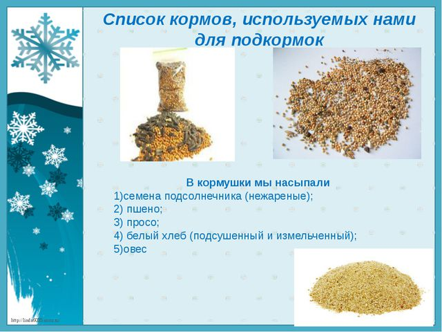 В кормушки мы насыпали 1)семена подсолнечника (нежареные); 2) пшено; 3) просо...