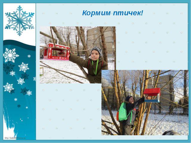 Кормим птичек! http://linda6035.ucoz.ru/