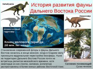 История развития фауны Дальнего Востока России Становление современной флоры