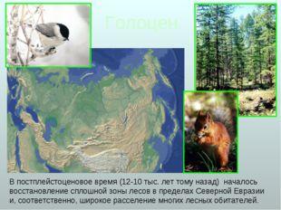 Голоцен В постплейстоценовое время (12-10 тыс. лет тому назад) началось восст