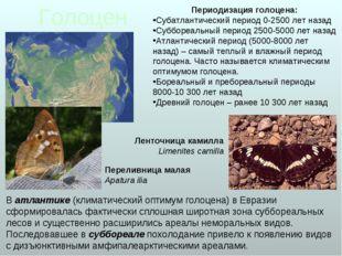 Голоцен В атлантике (климатический оптимум голоцена) в Евразии сформировалась