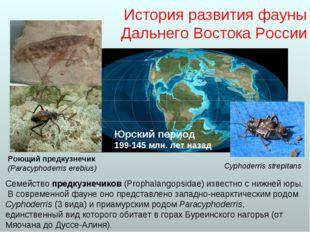 История развития фауны Дальнего Востока России Семейство предкузнечиков (Prop