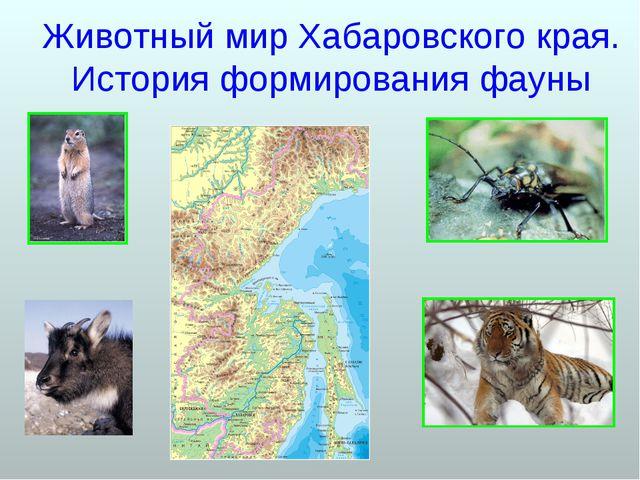 Животный мир Хабаровского края. История формирования фауны