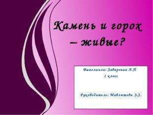 Выполнила: Заварзина Л.П 1 класс Руководитель: Мавлютова Э.З. Камень и горох