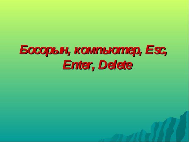 Босорын, компьютер, Esc, Enter, Delete