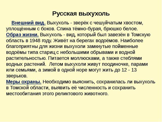 Русская выхухоль Внешний вид.Выхухоль - зверёк с чешуйчатым хвостом, уплощён...