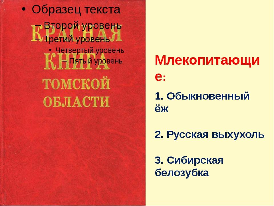 Млекопитающие: 1. Обыкновенный ёж 2. Русская выхухоль 3. Сибирская белозубка