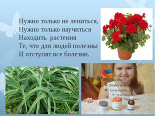 Нужно только не лениться, Нужно только научиться Находить растения Те, что д