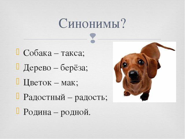 Собака – такса; Дерево – берёза; Цветок – мак; Радостный – радость; Родина –...
