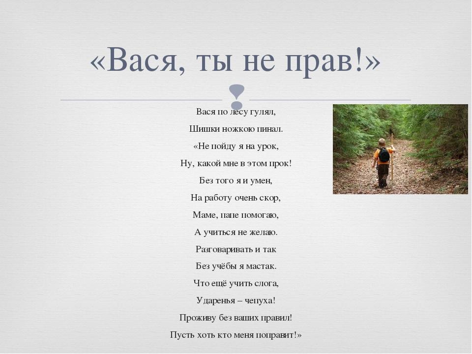 Вася по лесу гулял, Шишки ножкою пинал. «Не пойду я на урок, Ну, какой мне в...