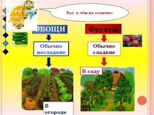 Обычно несладкие Обычно сладкие Вот в чём их отличие: В огороде В саду ОВОЩИ