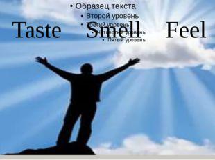 Taste Smell Feel