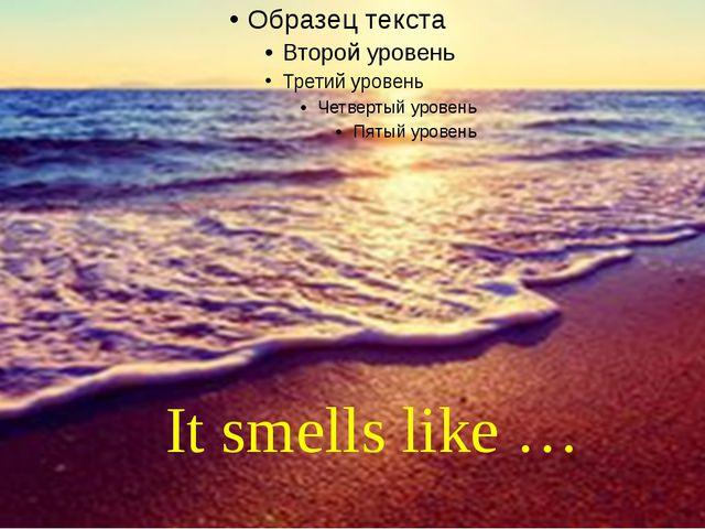 It smells like …