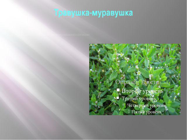 "Травушка-муравушка Вот стелется по земле ""травушка-муравушка"". Простая русска..."