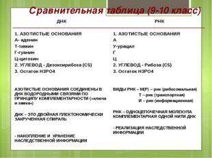 Сравнительная таблица (9-10 класс) ДНК 1. АЗОТИСТЫЕ ОСНОВАНИЯ А-аденин Т-тими