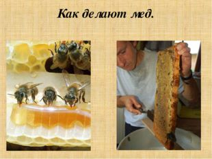 Как делают мед.