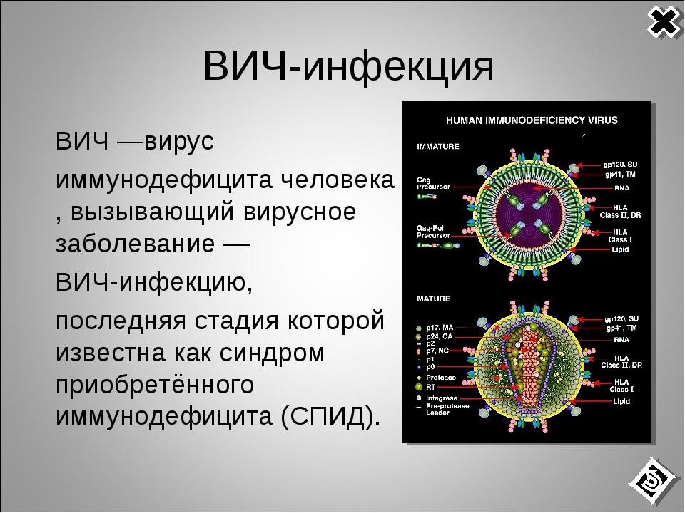 ВИЧ-инфекция ВИЧ—вирус иммунодефицитачеловека, вызывающий вирусное заболе...