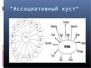 """Ассоциативный куст"""