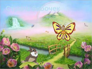 Страна бабочек