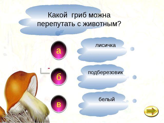 Какой гриб можна перепутать с животным? a в б лисичка подберезовик белый