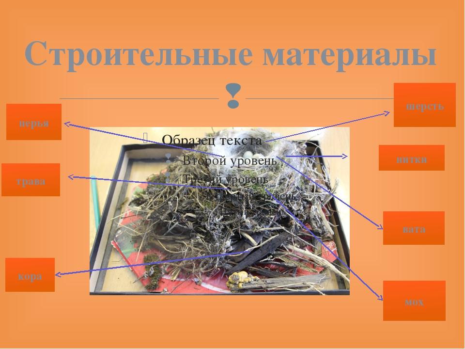 Строительные материалы шерсть перья мох трава кора нитки вата 
