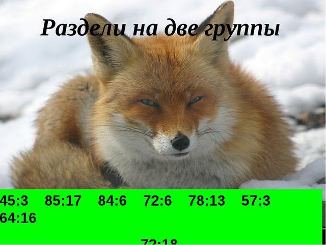 Раздели на две группы 45:3 85:17 84:6 72:6 78:13 57:3 64:16 72:18