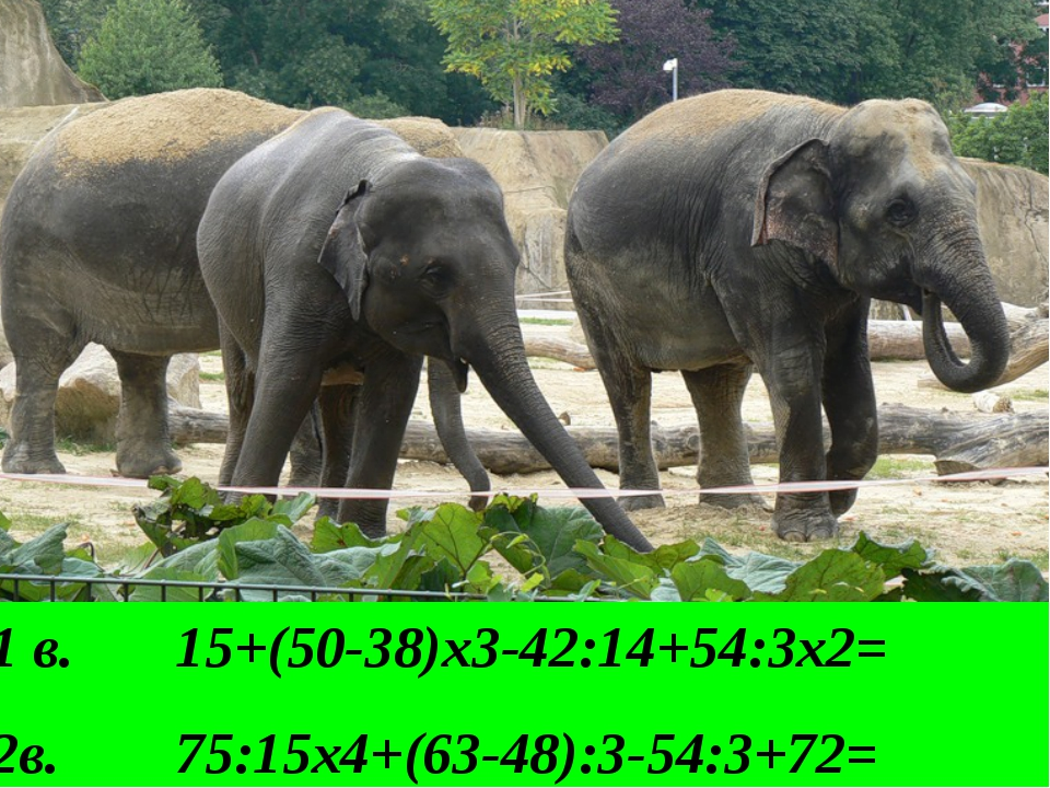 1 в. 15+(50-38)х3-42:14+54:3х2= 2в. 75:15х4+(63-48):3-54:3+72=
