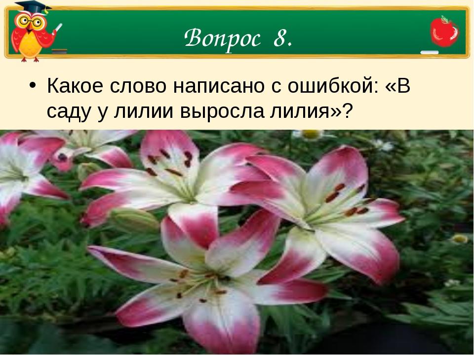 Вопрос 8. Какое слово написано с ошибкой: «В саду у лилии выросла лилия»?