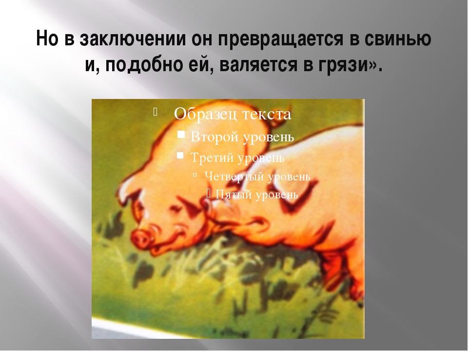 Но в заключении он превращается в свинью и, подобно ей, валяется в грязи».