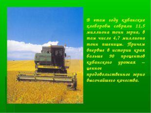 В этом году кубанские хлеборобы собрали 11,5 миллиона тонн зерна, в том числе
