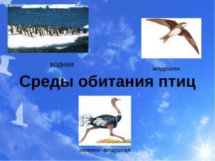 Среды обитания птиц водная воздушная наземно -воздушная