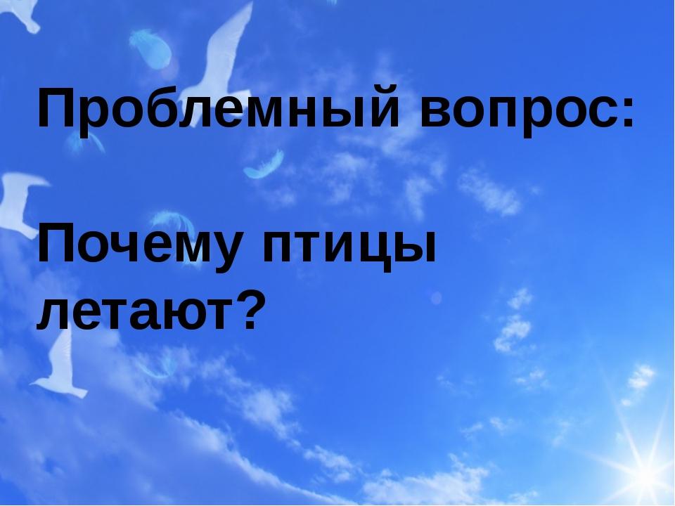 Проблемный вопрос: Почему птицы летают?