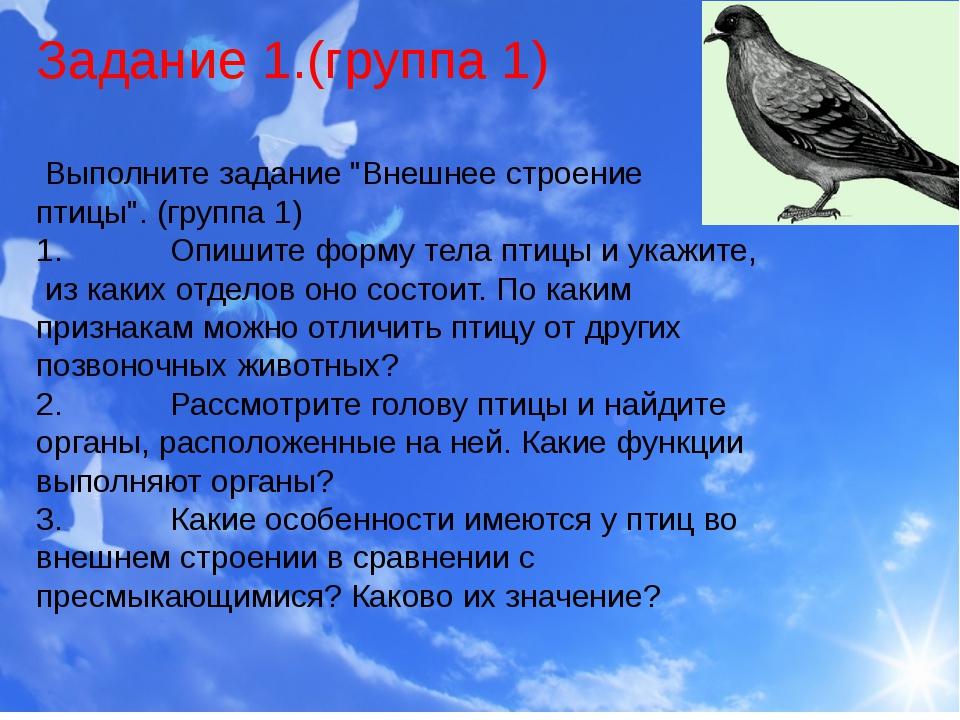 """Задание 1.(группа 1) Выполните задание """"Внешнее строение птицы"""". (группа 1)..."""