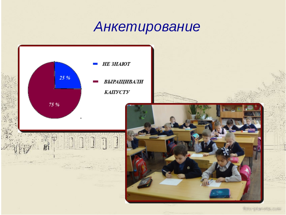 Анкетирование
