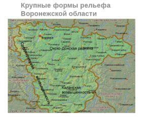 Крупные формы рельефа Воронежской области Среднерусская возвышенность Окско-Д