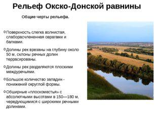 Рельеф Окско-Донской равнины Общие черты рельефа. Поверхность слегка волниста