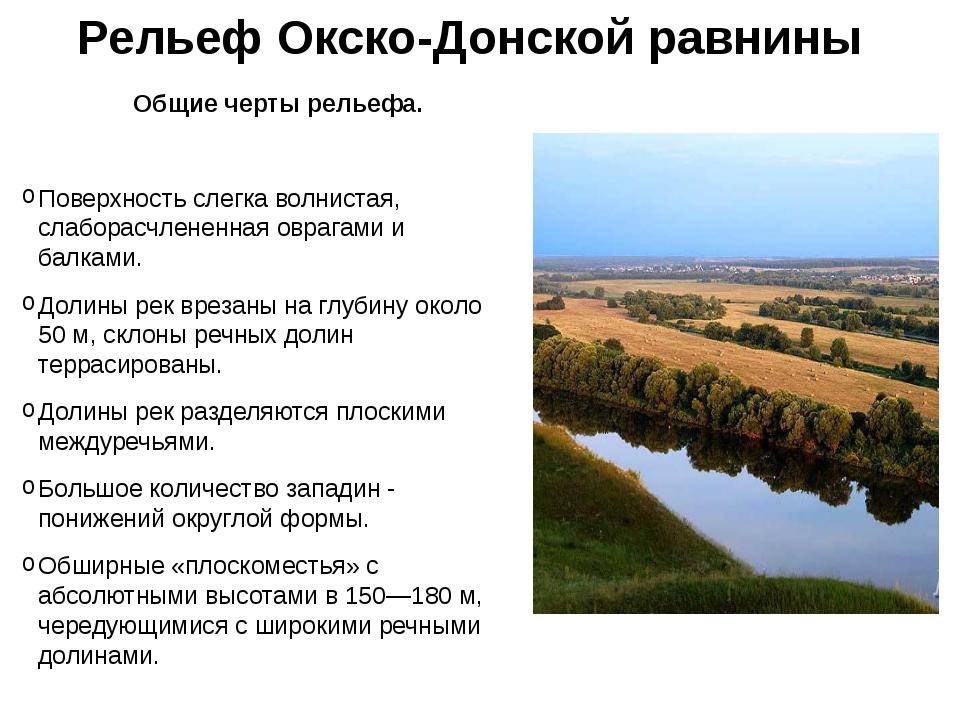 Рельеф Окско-Донской равнины Общие черты рельефа. Поверхность слегка волниста...