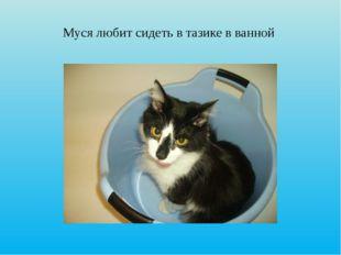 Муся любит сидеть в тазике в ванной