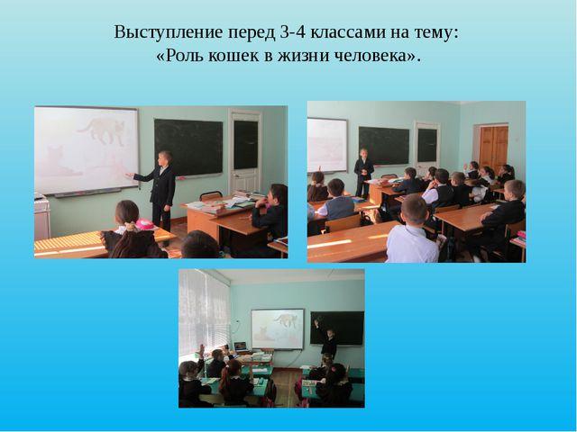 Выступление перед 3-4 классами на тему: «Роль кошек в жизни человека».